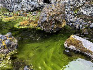 Stórulaxárgljúfur canyon