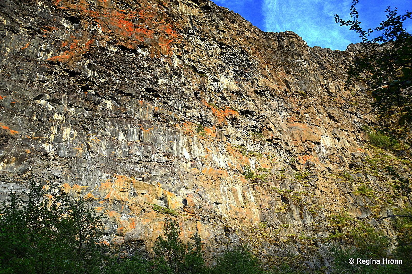 Sheer cliff face at Ásbyrgi NE-Iceland